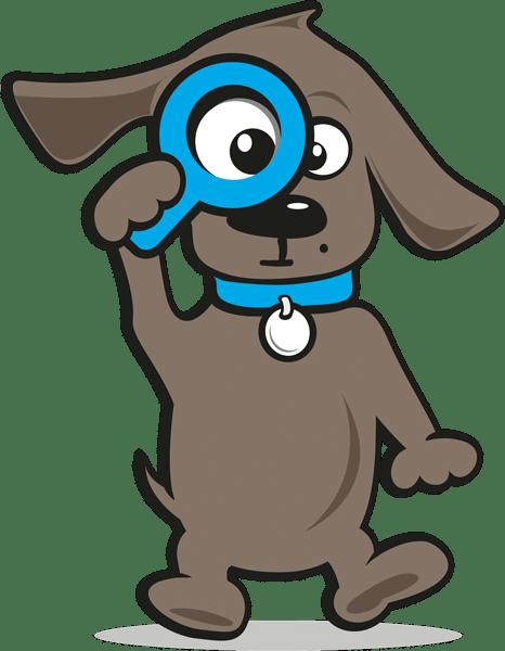 Krankenversicherung Katze | Tinki